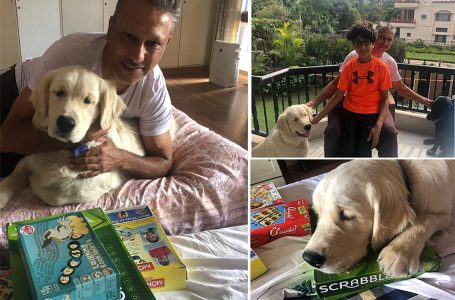 Dogs, scrabble and family keep Jeev in the right spirits
