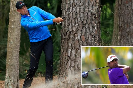 Lahiri misses cut at RBC as veteran Cink leads by five shots